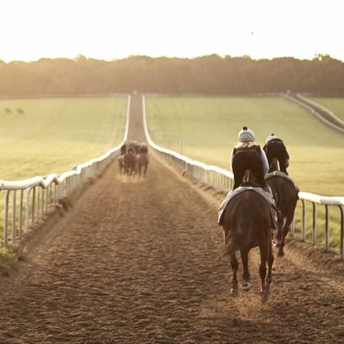 Horseracing Charities